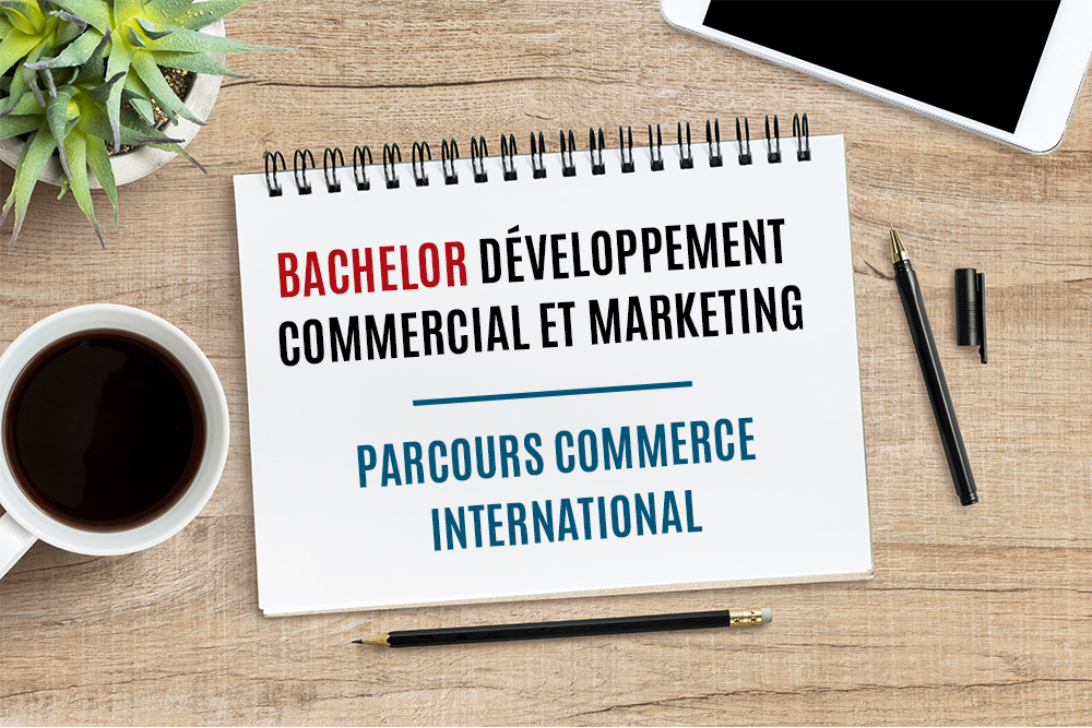 programme commerce international